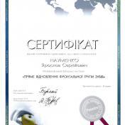 Науменко Ярослав Сергійович - фото сертифікату стоматолога 3