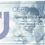 Шульженко Дмитрий: сертификат фото 3