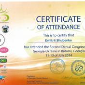 Шульженко Дмитрий: сертификат фото 5