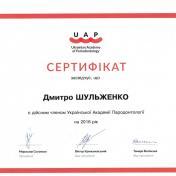 Шульженко Дмитрий: сертификат фото 15