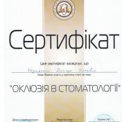 Шульженко Дмитрий: сертификат фото 17
