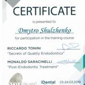 Шульженко Дмитрий: сертификат фото 18