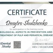Шульженко Дмитрий: сертификат фото 20