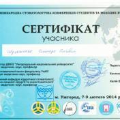 Шульженко Дмитрий: сертификат фото 22